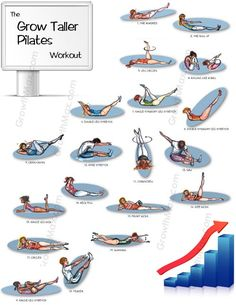 your height by doing pilates! increase your height by doing pilates! increase your height by doing pilates! How To Get Tall, How To Grow Taller, Exercise To Grow Taller, Pilates Video, Pilates Workout, Cardio, Get Taller Exercises, Stretches To Grow Taller, Increase Height Exercise