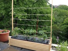 I can't find the original pin, but I saw someone build nice looking wooden frames for earthbox containers - used for growing tomatoes.   I added vertical struts with drilled holes so I could run trellis twine through.  Update: original pin was a brag post on ana-white.com.  Planter with finials.