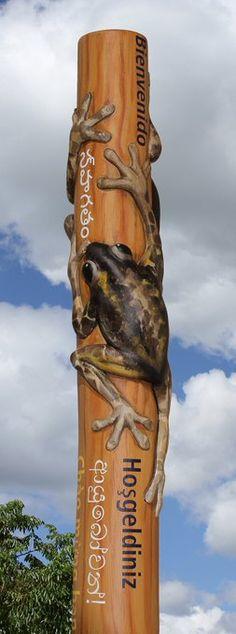 Pobblebonk frogs! (@DanthoniaDesign) / Twitter Parks In Sydney, Voss Bottle, Water Bottle, Animal Signs, Snowy Mountains, Led Signs, Western Australia, Frogs, Twitter
