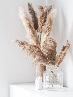 Cream Aesthetic, Brown Aesthetic, Flower Aesthetic, Aesthetic Iphone Wallpaper, Aesthetic Wallpapers, Decoration Entree, Beige Wallpaper, Home Decor Vases, Flower Phone Wallpaper