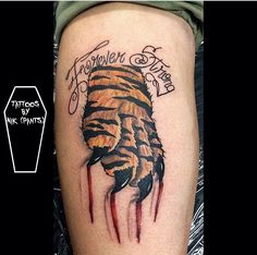 1ef33f4ea Displaying 17> Images For - Tiger Scratch Marks Tattoos... Scratch Tattoo ,
