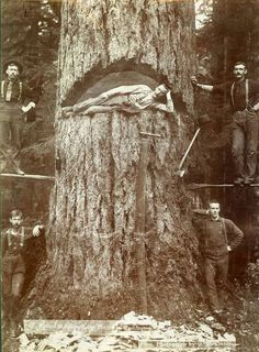 Look at these old-timey lumberjacks!