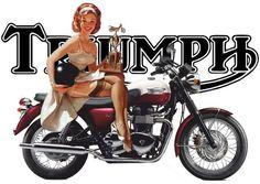 Triumph Triumph Motorcycles, Indian Motorcycles, Triumph Motorbikes, British Motorcycles, Vintage Motorcycles, Triumph Logo, Moto Triumph Bonneville, T100 Triumph, Bike Poster