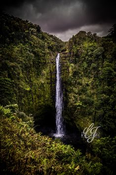 Hilo Hawaii #visionsbycarolphotography Waterfall, Photography, Outdoor, Outdoors, Photograph, Fotografie, Waterfalls, Photoshoot, Outdoor Games