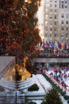 Rockefeller Center skating, Manhattan, New York City NYC Joann Vitali