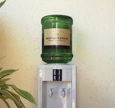 champagne water cooler, because vegans love a party