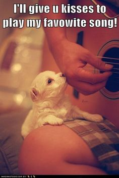 nose smooch:makes me wanna learn how to play the guitar.