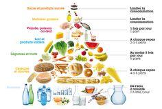 Qu'est-ce qu'une alimentation équilibrée? C'est simplement ce que représente la pyramide alimentaire, autrement dit le nombre de portions de chaque type d'aliments consommés quotidiennement.  Plus on monte, et moins il faut consommer d'aliment de ce groupe. Les portions sont ce que l'on peut consommer par jour (à l'exception des oeufs, dont la consommation est indiquée pour une semaine).
