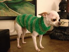 Sweater for my 3 pound Chihuahua.... Cut the foot portion off of those fuzzy socks you get for Christmas, cut two arm holes and presto DIY Dog sweater !