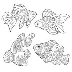 Vector: Coloring page of goldfish and clown fish. Freehand sketch drawing for adult antistress coloring book in zentangle style.