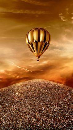 Golen Hot Air Ballon ride: Dream by Jacky Air Balloon Rides, Hot Air Balloon, Or Noir, Air Ballon, Shades Of Gold, Photos Du, Art Photography, Beautiful Pictures, Scenery