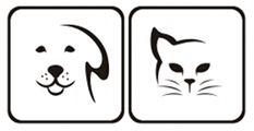 Nogle franske bulldogs har sundhedsproblemer der gør deres leve alder lavere end andre hundes. Jeg fortæller her hvad gennemsnittet er og hvilke problemer racen har.
