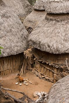 Africa | A typical scene in Konso Village, in Sourthern Ethiopia. | © Sean Winslow