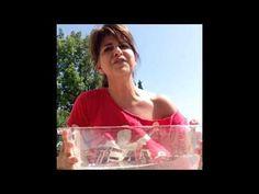 Kathi Accepts The ALS Ice Bucket Challenge! | Kathi Yeager on KTST