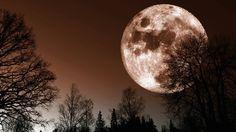 Superksiężyc 2015: jak zrobić zdjęcia podczas zaćmienia księżyca