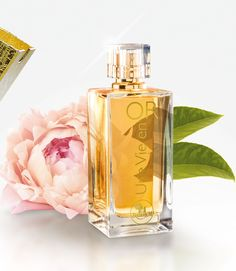 French Relational Marketing Company in the Beauty and Wellness Sector Frederic M, Smell Good, Perfume Bottles, Portugal, Fragrance, Beauty, Nature, Stuff Stuff, Woman
