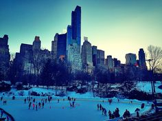 New York City - Central Park in february
