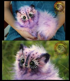 Cotton Candy Kitten by Wood-Splitter-Lee.deviantart.com on @DeviantArt