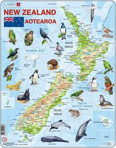Buy New Zealand Map - Jigsaw Puzzle at Mighty Ape NZ. Larsen Maxi: New Zealand Map – Jigsaw Puzzle This quality, 71 piece jigsaw puzzle is made in Norway out of recycled cardboard. It is a tray puzz. Map Of New Zealand, North Island New Zealand, New Zealand Beach, South Island, South Pacific, Pacific Ocean, Camping Aesthetic, Maori Art, Norway