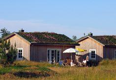 Stranddorf Augustenhof - Ferienhäuser direkt an der Ostsee