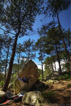 Caroline Sinno - Fontainebleau on I love climbing Bouldering by Eddie Fowke