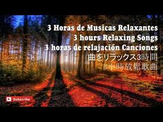 3 HORAS DE MUSICAS PARA MEDITAR   ESTUDAR   RELAXAR   3 HOURS Relaxing Music - YouTube