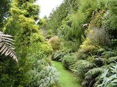 new zealand garden Garden Design Plans, Vegetable Garden Design, Cottage Garden Plants, Garden Animals, Garden Landscaping, Garden Path, Landscaping Design, Garden Ideas, Garden Images