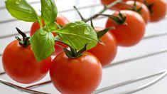 Rajčiaky: Návod na pestovanie od A po Z - Pluska.sk Planting Seeds, Beautiful Gardens, Gardening, Stuffed Peppers, Vegetables, Plants, Food, Edible Garden, Gardens