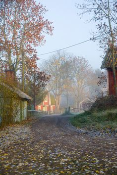 Small village in Sweden on a misty morning by kbhsphoto on artflakes.com