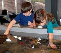 Huntsman Discovery Aquarium