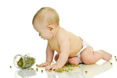 10 Great Baby Food Recipes...Great for making your own. I plan on trying these.
