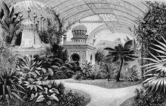 Residenze Wittelsbach : disegno dei giradini d'inverno alla Residenz fatti costruire da Ludwig II circa 1870