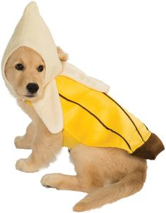 banana dog costume extra large 887830 the banana costume is designed to fit extra large sized dogs - Banana Costume Halloween