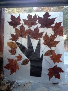 Collect leaves, press them along with a construction paper tree trunk, between two sheets of contact paper.