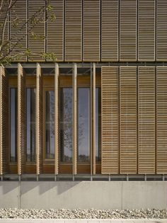 Built by MGF Architekten in Aalen, Germany with date 2006. Images by Christian Richters. Landscape and architecture   Three buildings, covered with wood, are situated on a gentle slope with a beautiful view...