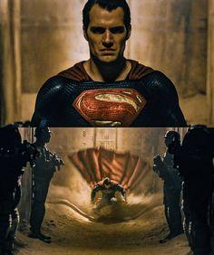 Justice League Toys, Justice League Aquaman, Superman Movies, Batman Vs Superman, Superman Stuff, Black Adam Shazam, Superman Dawn Of Justice, Little Poni, Dc Characters