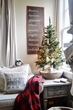 Super easy DIY reindeer sign! (lol - my Shih Tzu TinkerToy loves to climb to the top of the couch pillows too! ~mgh)