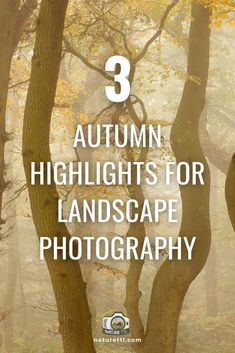 Autumn, or fall, highlights for landscape photographers to try this season. Take dramatic, colourful images during this photogenic time of year.