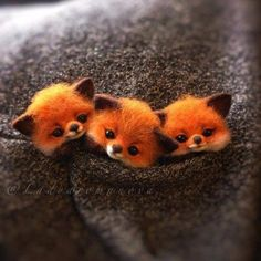 Happy felted foxes