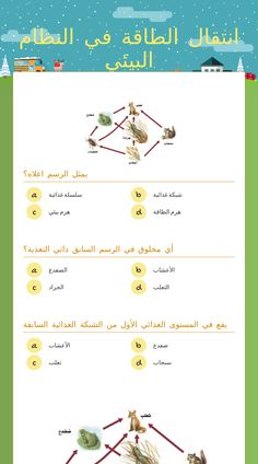 Use This Wizer Me Blended Worksheet انتقال الطاقة في النظام البيئي With Your Students Or Create Your Own 3d Art Drawing Interactive Edtech