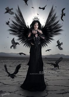 """While I was writing one of my poems (""""Fallen angel"""") I was thinking of something like this manip.hope you`ll like it Stock: model : death : background : rose : knife : bird : Dark Angels, Angels And Demons, Gothic Angel, Gothic Art, Dark Fantasy Art, Gothic Drawings, Beautiful Dark Art, Angel Warrior, Demon Girl"""