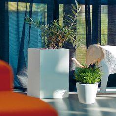 Donica Tube jest doskonałym pomysłem na aranżację zarówno wnętrza jak i ogrodu