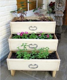 Plant boxes recycled dresser drawers DIY