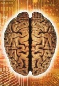 One of the easiest things you can do to improve your memory and concentration is to buy Choline supplements. Choline is an essential nutrient that has a bi