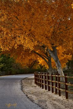 Corrales, New Mexico