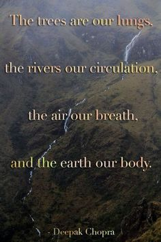 59 Ideas For Nature Quotes Earth Life The Words, Now Quotes, Life Quotes, Save Our Earth, A Course In Miracles, Deepak Chopra, Encouragement, Climate Change, Decir No