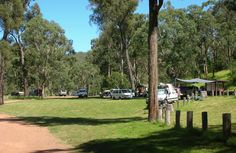 Washpool campground, Towarri National Park. Photo: NSW Government North of Scone.