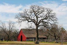 Nash farm Grapevine, TX