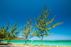 Mauritius   by Isfaaq Caunhye