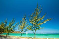 Mauritius | by Isfaaq Caunhye